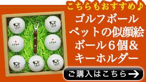 似顔絵ゴルフボール6個セット購入こちら
