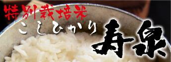 山口県産 お米 寿扇 徳佐 徳地 穂垂 こしひかり ひとめぼれ