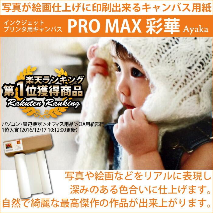 PROMAX彩華インクジェットプリンタ用キャンバス
