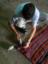 キリムの整形作業 キリム&ペルシャ絨毯専門店オリエンタルムーン