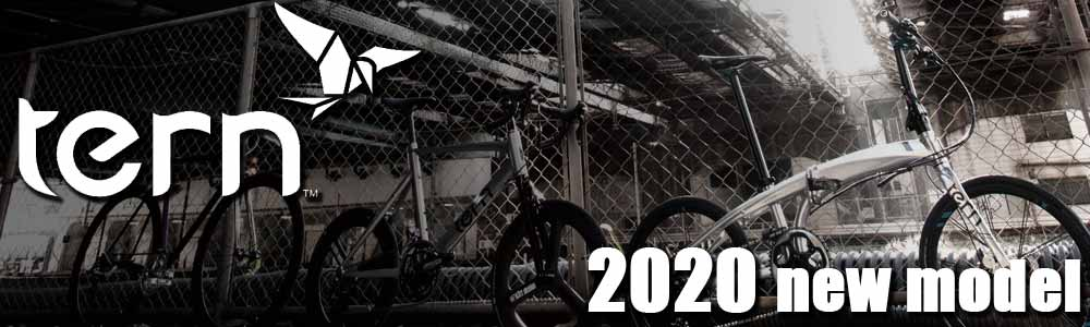 Tern 2020