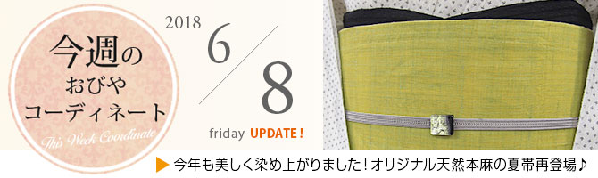 お仕立て上がり帯 夏帯 和のレース 膨れ織り 西陣織 別注織 (白) シリーズ 全3柄 九寸 名古屋帯