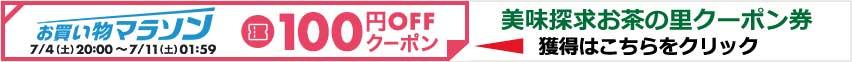 クーポン券100円
