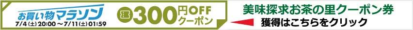 クーポン券300円