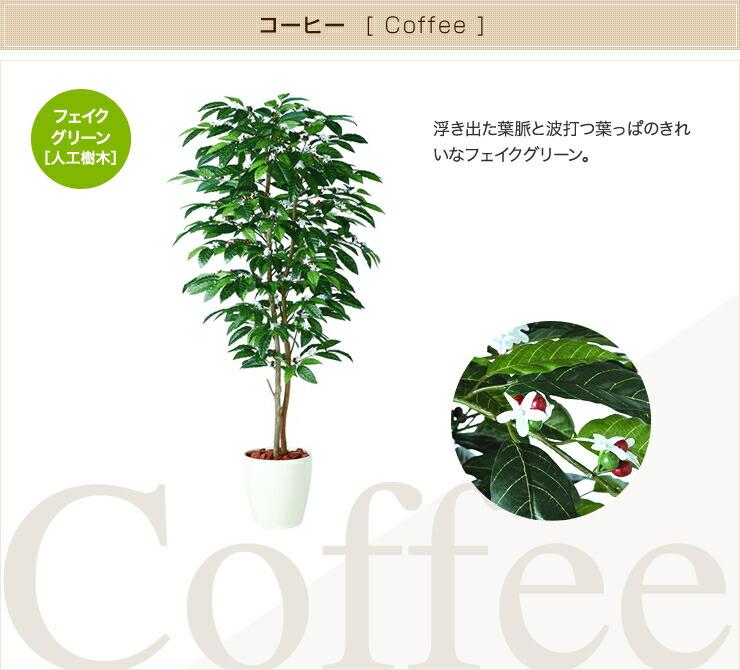 コーヒー フェイクグリーン 人工観葉植物 オフィス