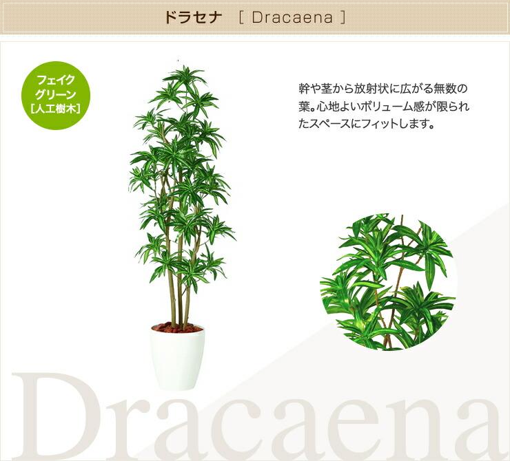ドラセナ フェイクグリーン 人工観葉植物 オフィス