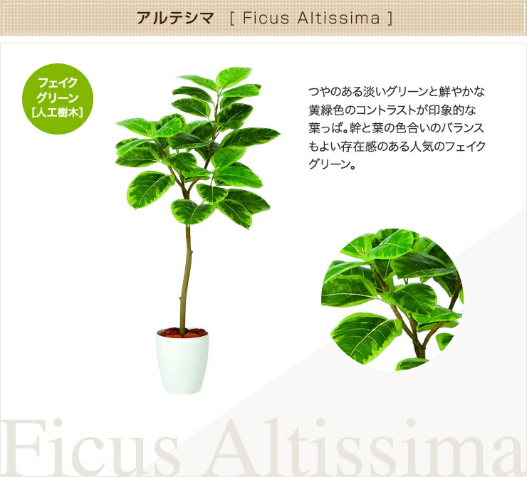 アルテシマ フェイクグリーン 人工観葉植物 オフィス