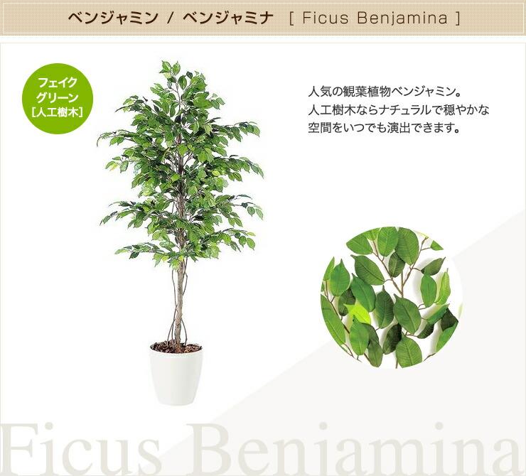 ベンジャミナ ベンジャミン フェイクグリーン 人工観葉植物 オフィス