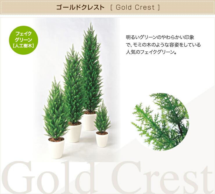 ゴールドクレスト フェイクグリーン 人工観葉植物 オフィス