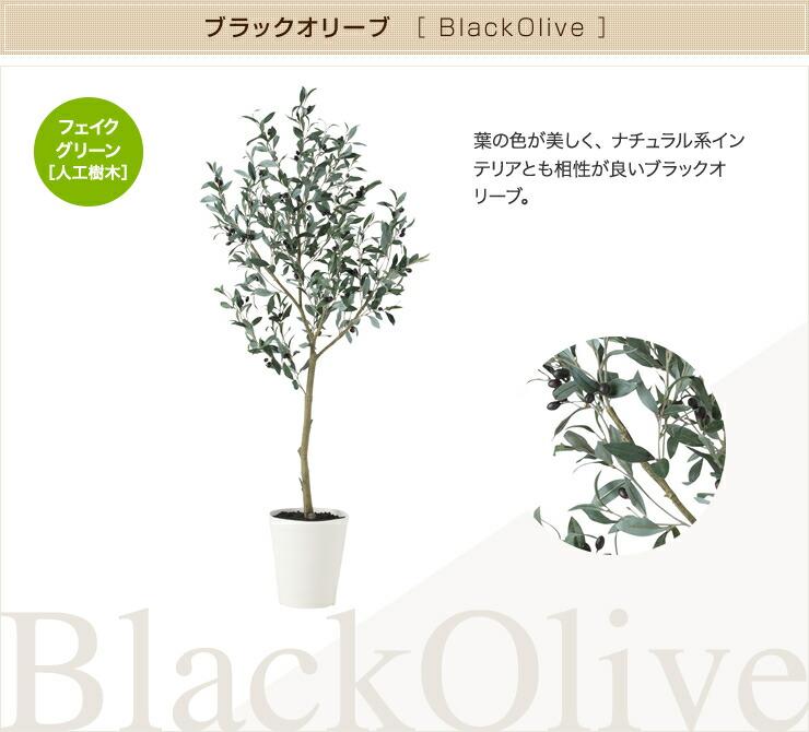 ブラックオリーブ フェイクグリーン 人工観葉植物 オフィス