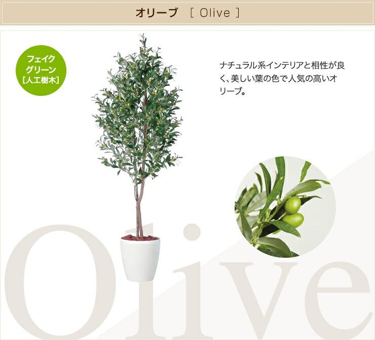 オリーブ フェイクグリーン 人工観葉植物 オフィス