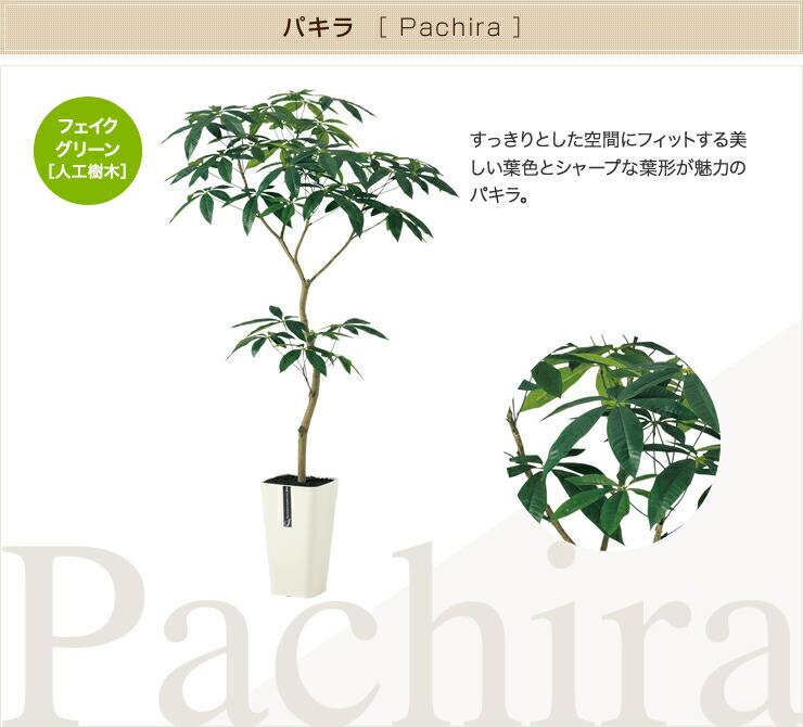 パキラ フェイクグリーン 人工観葉植物 オフィス