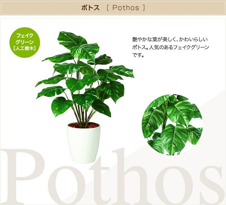 ポトス フェイクグリーン 人工観葉植物 オフィス