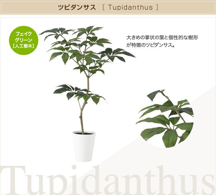 ツピダンサス フェイクグリーン 人工観葉植物 オフィス