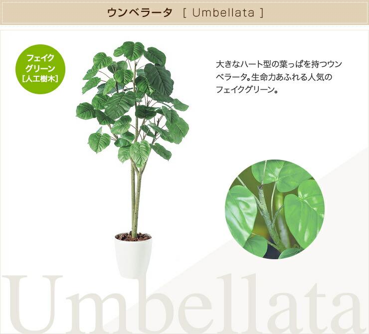 ウンベラータ フェイクグリーン 人工観葉植物 オフィス