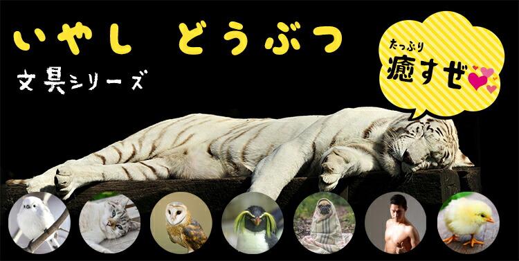癒し動物文房具文具シリーズ