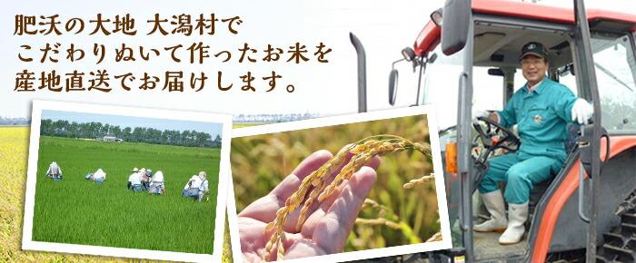 肥沃の大地 大潟村でこだわりぬいて作ったお米を産地直送でお届けします。