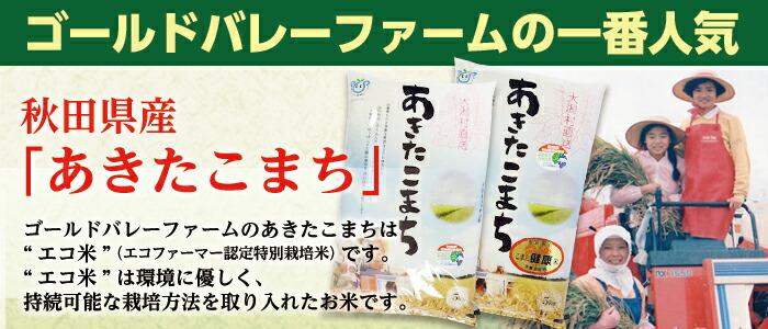 """ゴールドバレーファームの一番人気 秋田県産「あきたこまち」ゴールドバレーファームのあきたこまちは""""エコ米""""(エコファーマー認定 特別栽培米)です。"""