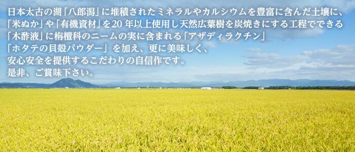 日本太古の湖「八郎潟」に堆積されたミネラルやカルシウムを豊富に含んだ土壌に、「米ぬか」や90種類以上の有効微生物群を含む「有機資材」を20年以上使用しさらに天然広葉樹を炭焼きにする工程でできる「木酢液」に栴檀科のニームの実に含まれる「アザディラクチン」「ホタテの貝殻パウダー」を加え、更に美味しく、安心安全を提供するこだわりの自信作です。是非、ご賞味下さい。