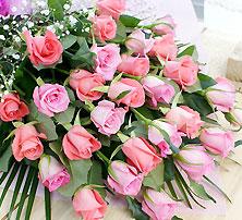 ピンクのバラ2色30本の花束