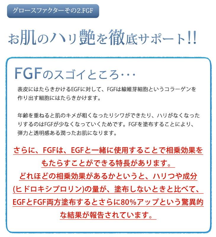 FGFとは