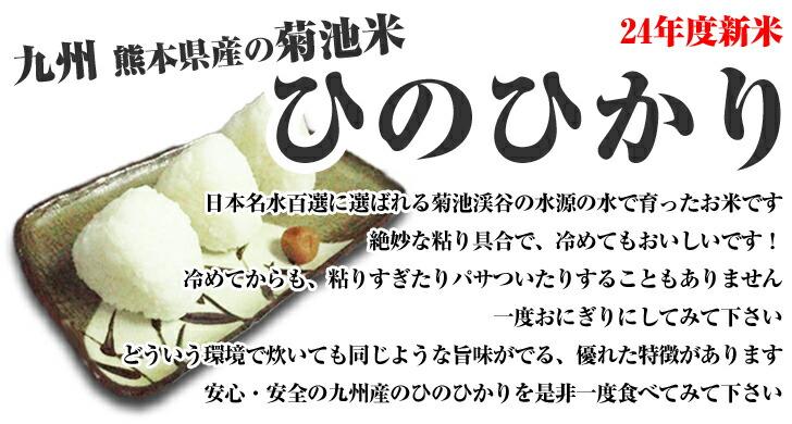 新米 熊本県産の菊池米 ひのひかりで作ったおにぎりです!確かに冷めても旨味があり美味しいです♪