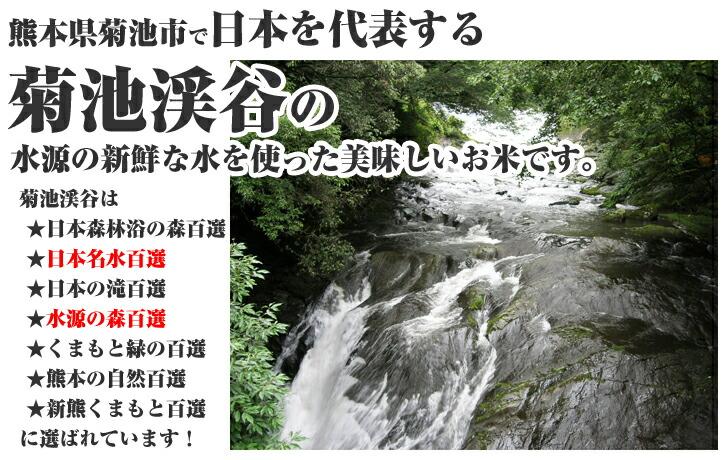 菊池米 ひのひかりは日本名水百選の自然豊かな水で育てられてます!