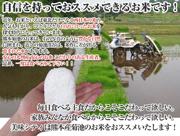 熊本産菊池のお米