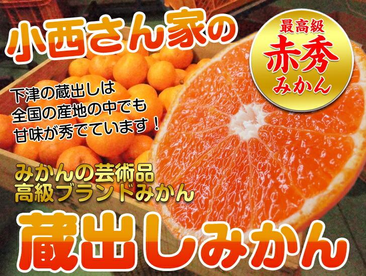 生産量日本一の和歌山みかん!糖度12度以上の絶品蔵出しみかん♪甘みと酸味の絶妙なバランスのとれた小西さん家のみかん!