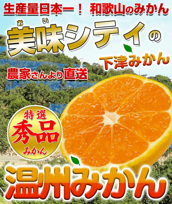 生産量日本一の和歌山みかん!糖度12度以上の絶品早生みかん♪甘みと酸味の絶妙なバランスのとれたみかん!