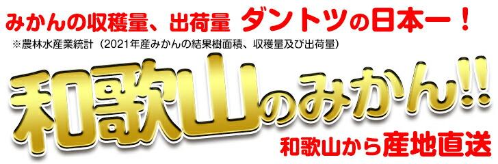 小西さんのみかんシリーズ