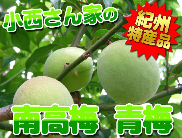 紀州南高梅は和歌山の特産品!とても綺麗な色合いで梅酒には抜群です!