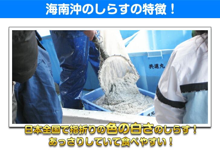 大道商店のシラスは和歌山県海南沖のしらすで、日本全国でも指折りの色の白さのしらすで、あっさりしていて食べやすいのが特徴!
