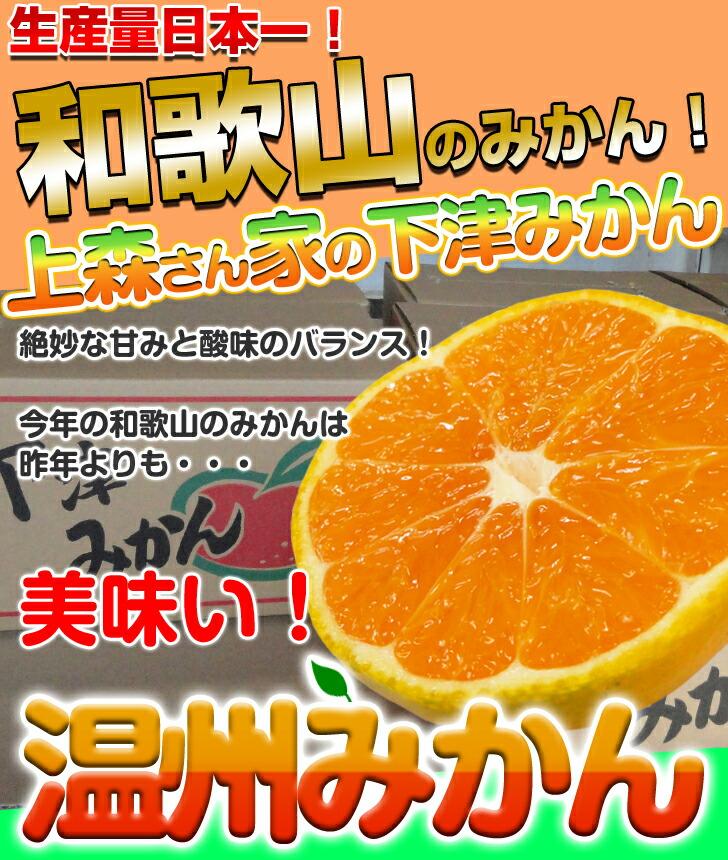 生産量日本一の和歌山みかん!最高糖度12度以上の絶品早生みかん♪甘みと酸味の絶妙なバランスのとれた上森さん家のみかん!