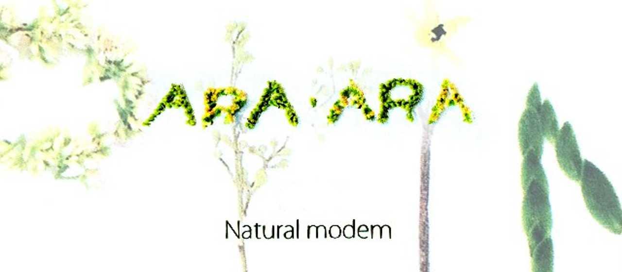 araara(アラアラ)