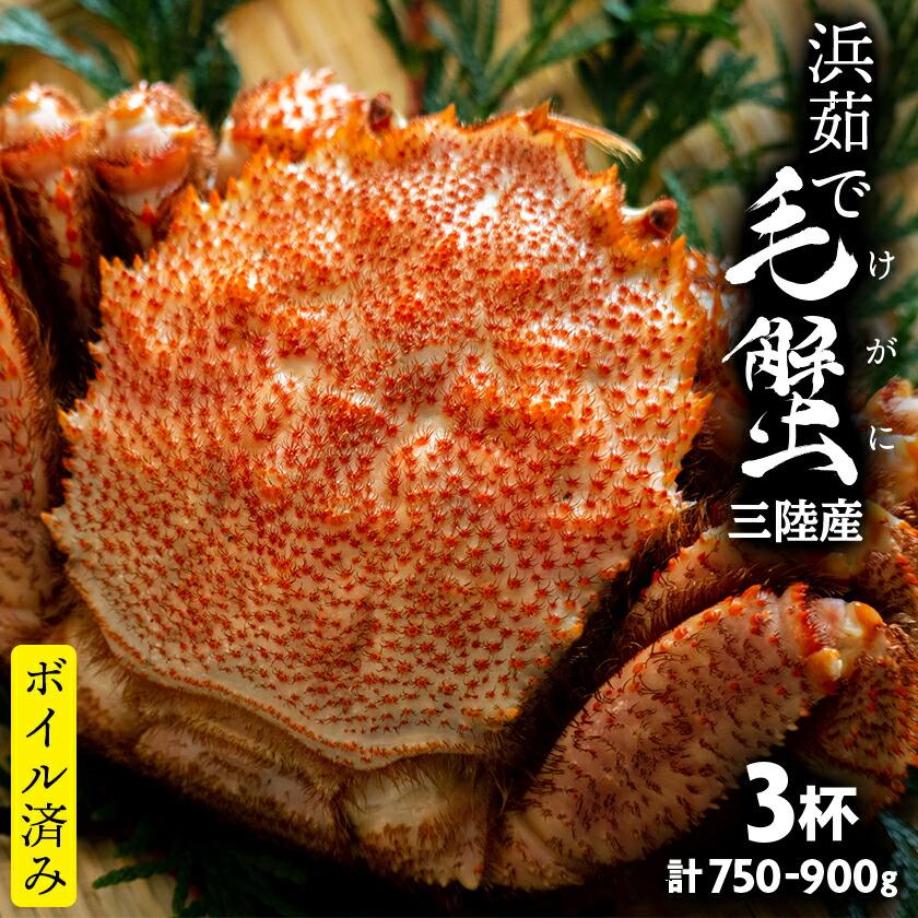 三陸産 浜茹で毛ガニ 3杯 750-900g(1杯あたり250-300g)
