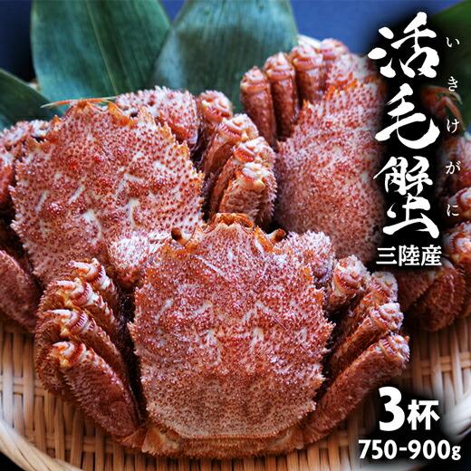 三陸産 活き毛ガニ 3杯 750-900g