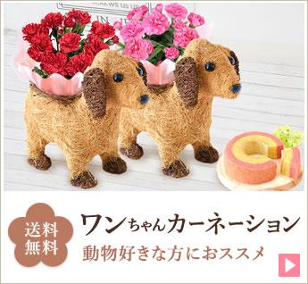 母の日画像 わんちゃん花鉢&お菓子セット