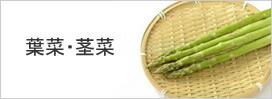 葉菜・茎菜類1