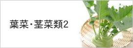 葉菜・茎菜類2