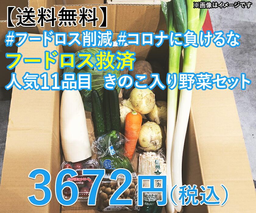 11品目野菜セット