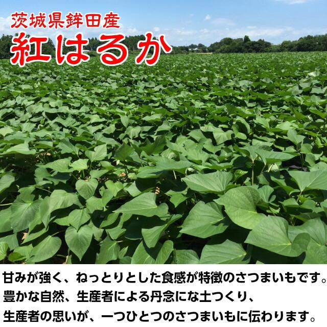 茨城県 鉾田産 紅はるか使用,焼き芋,冷やし焼き芋,紅はるか,小太郎物産