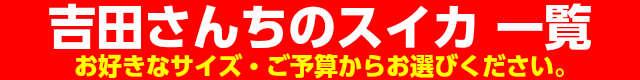フルーツ,吉田さんちの紅大スイカ一覧,すいか,お中元 ギフト