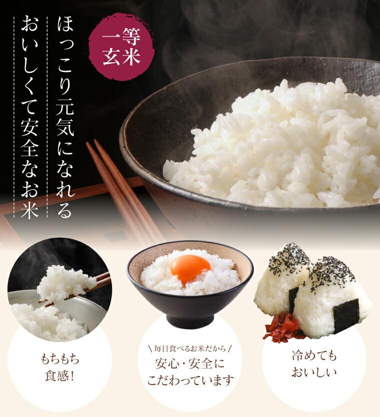 米粒が乳白色している。お米に含まれているでんぷん質のアミロースが低い、低アミロース米なので粘りが強く食感はモチモチ。冷めても硬くなりにくいのが特徴
