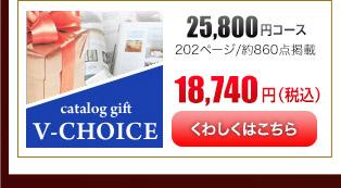 Vチョイス25600円コース