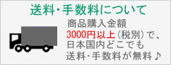 商品購入金額が3000円以上(税別)で国内どこでも送料・手数料が無料!詳しくはバナーをクリック!