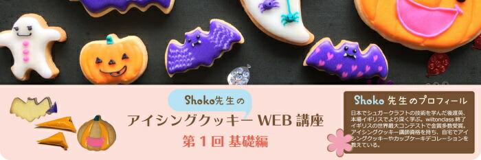 shoko先生のWEB講座 第一回基礎編へ