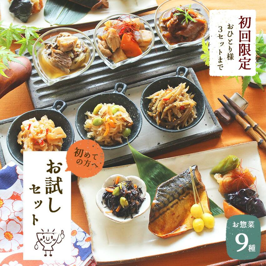 お惣菜おかわり 無添加惣菜9種お試しセット