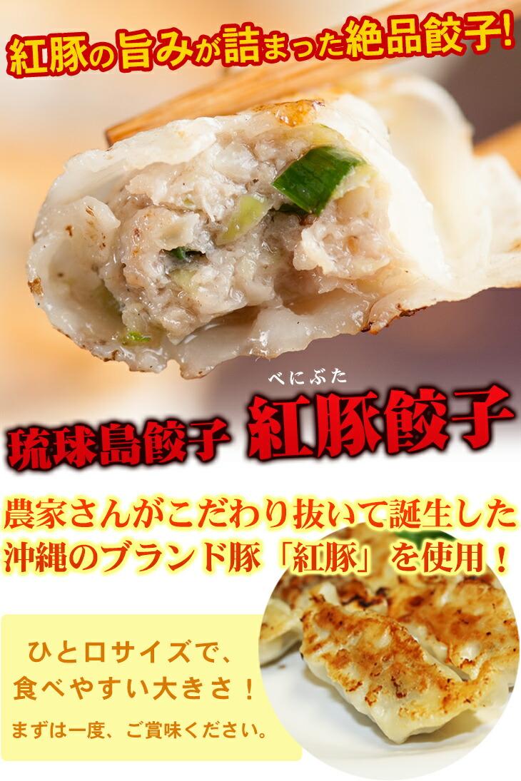 琉球島餃子!紅豚餃子
