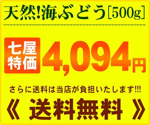 価格!天然海ぶどう500g